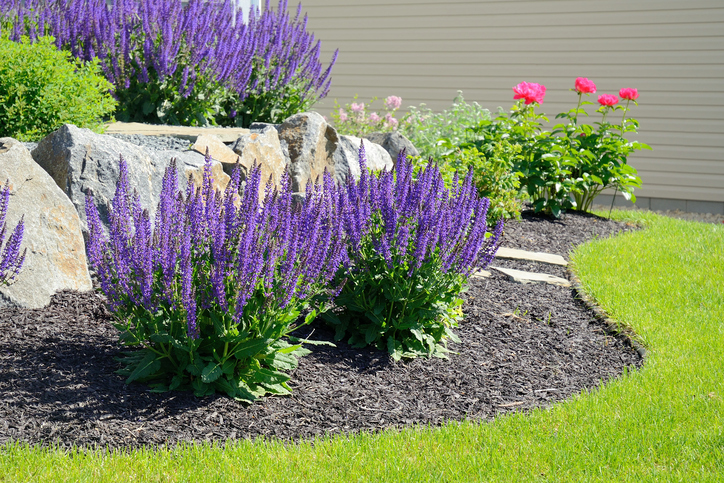5 low maintenance landscaping ideas caliterra living for Low maintenance flower bed plans