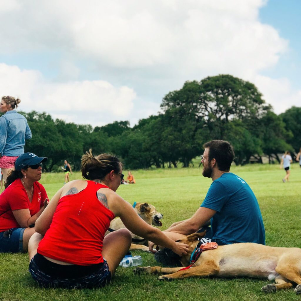 near Dripping Springs, dog-friendly places near Dripping Springs, dog-friendly things to do, Austin dog-friendly places, things to do in Dripping Springs, near Caliterra, Dripping Springs attractions